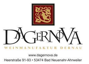 dagernova_logo2